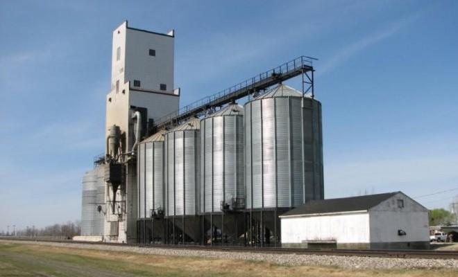 Grain and Food processing
